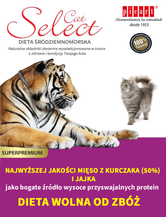 plakat_select_koty
